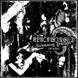 Review for Blackwinged - Summoning Destroyer