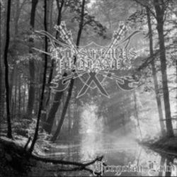 Review for Blasfemus Profanus - Forgotten Land