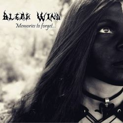 Review for Bleak Wind - Memories to Forget...
