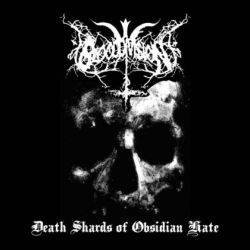 Review for Blood Division (USA) - Death Shards of Obsidian Hate