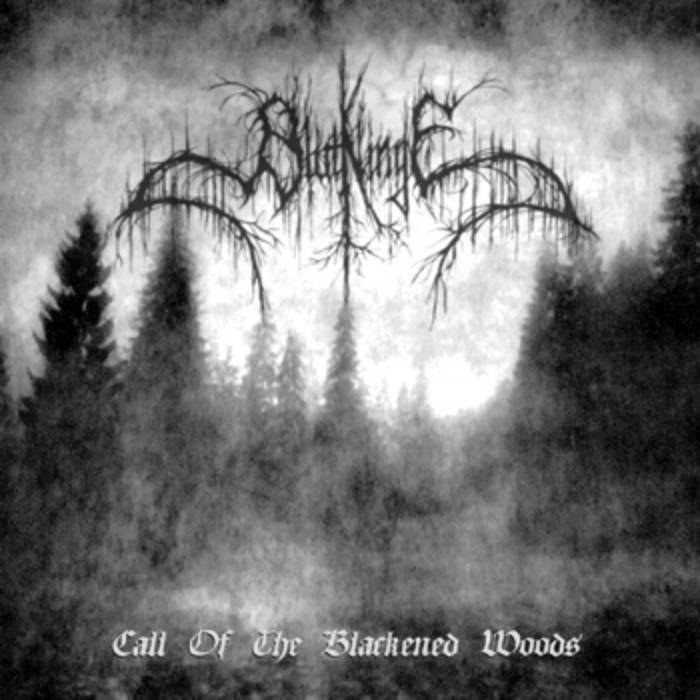 Review for Blutklinge - Call of the Blackened Woods