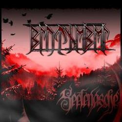 Review for Blutnebel - Seelenasche
