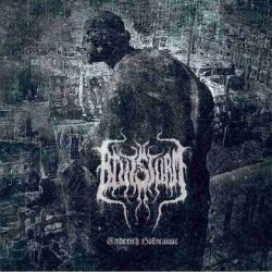 Review for Blutsturm - Endreich Holocaust