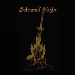 Review for Boletaria's Plight - Boletaria's Plight