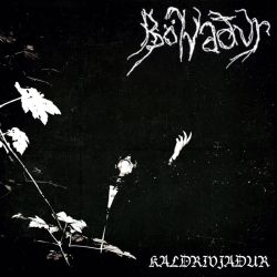 Review for Bölvaður - Kaldrivjaður