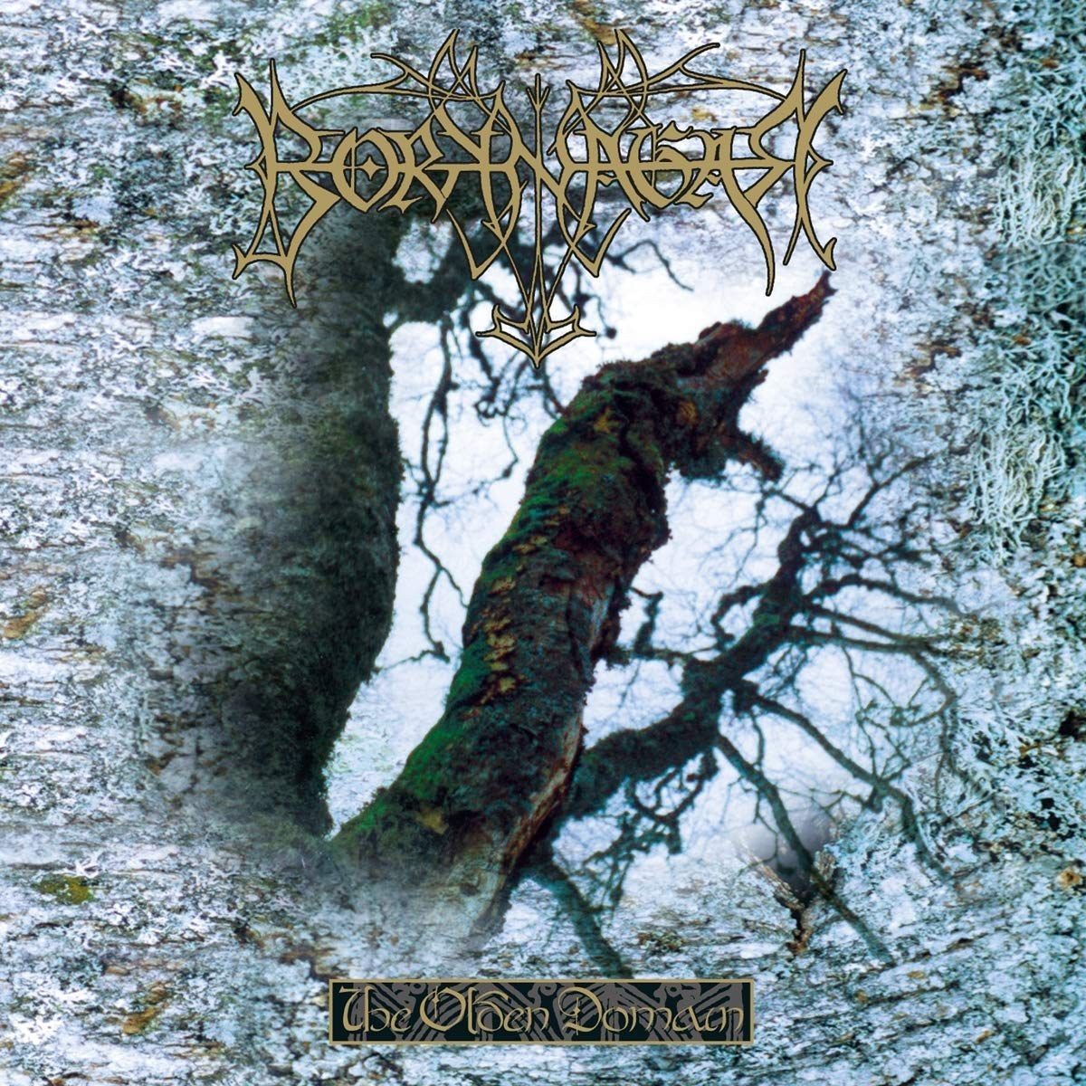 Review for Borknagar - The Olden Domain