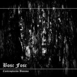 Review for Bosc Fosc - Contemplación Boscosa