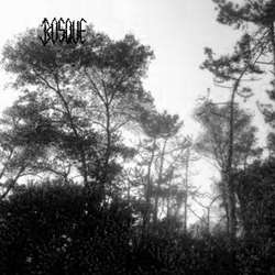 Review for Bosque - Dead Nature