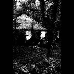 Reviews for Bosque - Salvation