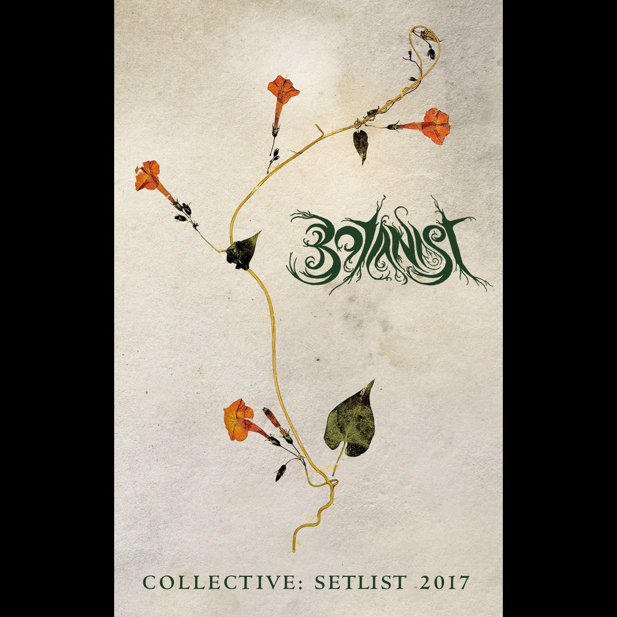 Review for Botanist - Collective: Setlist 2017