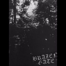 Review for Brazen Gate - Trials of the Will
