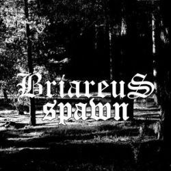 Review for Briareus - Spawn
