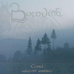 Review for Bucovina - Ceasul Aducerii-Aminte