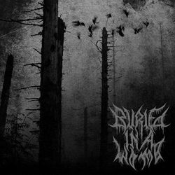 Review for Buried in a Womb - Prenatal Suicide