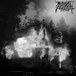 Review for Burning Church Forest - Book II