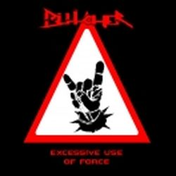 Review for Bütcher (BEL) - Excessive Use of Force