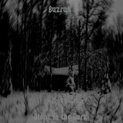 Review for Buzruh - Alone in the Dark