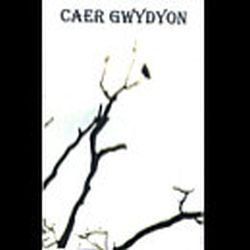 Review for Caer Gwydyon - To the Woods I Rode