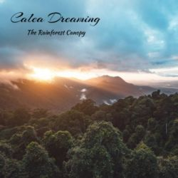Review for Calea Dreaming - The Rainforest Canopy