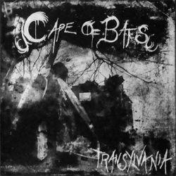 Review for Cape of Bats - Transylvania