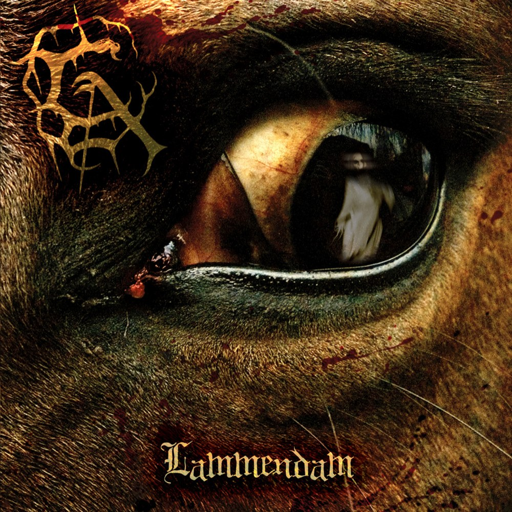 Review for Carach Angren - Lammendam