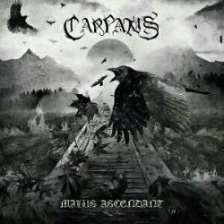 Review for Carpatus - Malus Ascendant