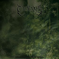 Review for Carpatus - The Ultimate Storm of Terror