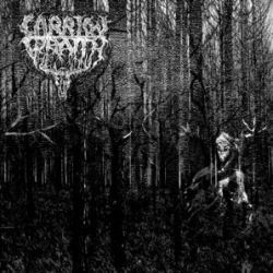 Review for Carrion Wraith - Carrion Wraith