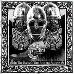 Review for Celtachor - In the Halls of Our Ancient Fathers