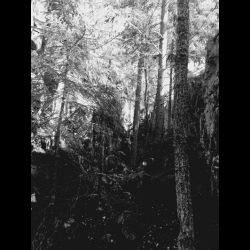 Reviews for Chern / Чернь (RUS) [β] - Жигулёвские истории (Stories from Zhiguli Mountains)