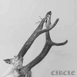 Review for Circle - My Last Wish