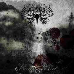 Review for Coldnight - Celestial Sepulchral