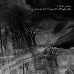 Review for Colorless Forest - Imprints of Dreams in Hyaline Ice