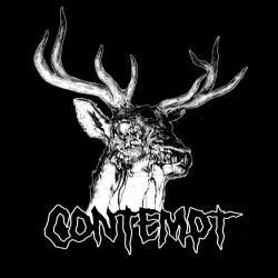 Review for Contempt - Skinwalker