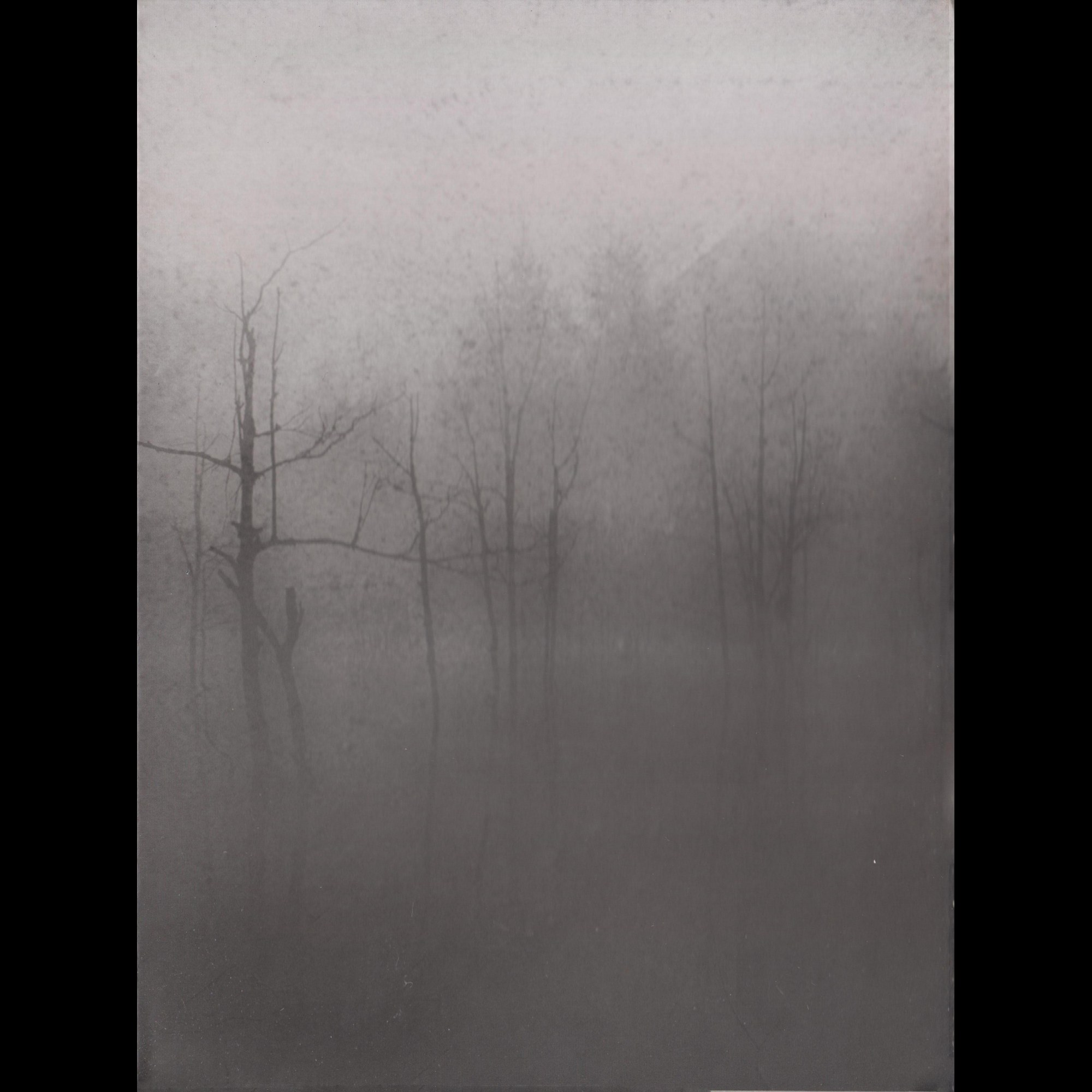 Review for Dark Fount - A Sapless Leave Withering in the Night Fog