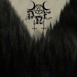 Reviews for Dark Rain Forest - Dark Rain Forest
