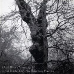 Review for Dead Raven Choir - ...but Inside They Are Ravening Wolves