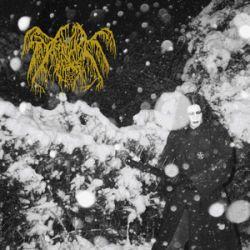 Death Like Silence - Deathlike SIlence