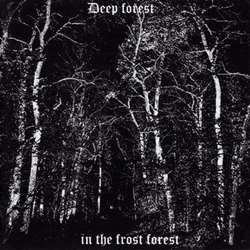 Review for Deep Forest - In the Frost Forest