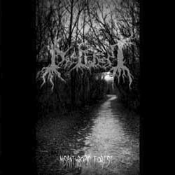 Review for Deep Forest - Misanthropic Forest