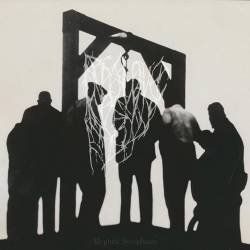 Review for Degloved - Mephitic Sycophants