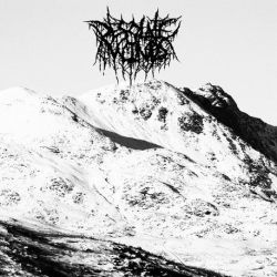 Reviews for Desolate Winds - In Times of Cold