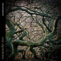 Desolation (DEU) - Desoriented