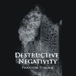 Review for Destructive Negativity - Phantom Tumour