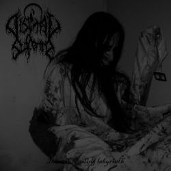 Dismal Suffering - Into the Bleeding Labyrinth
