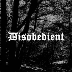 Review for Disobedient - Disobedient