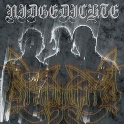 Review for Drauggard - Nidgedichte