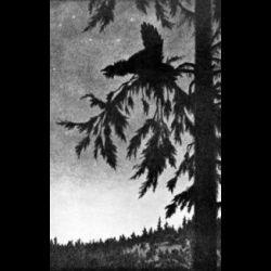 Draugluin (GRC) - The Book of Blotar
