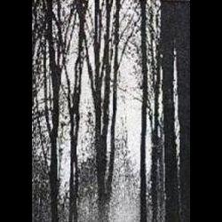 Reviews for Druadan Forest - Druadan Forest
