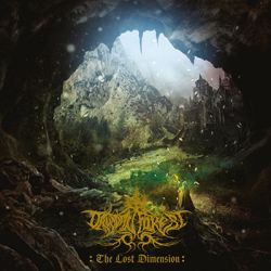 Review for Druadan Forest - The Lost Dimension